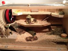 DIY hamster cage - wood I love the natural looking cages, they're so neat!
