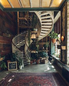 We accidentally worked through lunch today and so we're dreaming of this place in Berlin and the incredible food/plant combo.  #needfoodasap