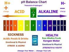 Ph Chart Copy Alkaline T Recipes Foods Kangen Water