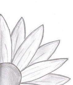 Simple art drawings, easy nature drawings, easy drawings sketches, easy drawings of flowers Easy Pencil Drawings, Easy Flower Drawings, Easy Doodles Drawings, Easy Drawings Sketches, Easy Doodle Art, Cute Easy Drawings, Cool Art Drawings, Drawing Ideas, Drawing Flowers