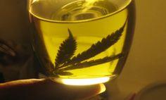 MARIHUANA Y #FIBROMIALGIA... Uno de cada diez pacientes de fibromialgia utiliza marihuana https://fibromialgiadolorinvisible.blogspot.com.ar/2012/08/marihuana-y-fibromialgia-uno-de-cada.html Foto: Omicrono