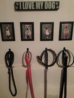 Dog Walking Station Every one should have this it makes life Toy Rooms DIY dog Life Pitbull station Walking Animal Room, Funny Bird, Wall Clips, Dog Rooms, Rooms For Dogs, Training Your Dog, Training Tips, Training Schedule, Training Programs