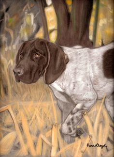$180 1 subject 14x17 pastel custom drawn portrait. # dog, German short hair pointer