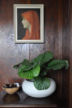 Inside the home of Lisa and Jared of Garden Objects Online Store | Styled Canvas
