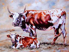 Art out of Africa ~ Hermanus based South African artist Terry Kobus is renowned for his exquisite Nguni Cattle paintings. Longhorn Cattle, Cattle Farming, Livestock, Cow Painting, South African Artists, Art Corner, Cow Art, Rind, Western Art