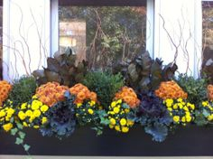 Beautiful Fall Garden Decor Ideas For Inspiration 43 Box Container, Fall Containers, Container Plants, Container Gardening, Succulent Containers, Container Flowers, Fall Flower Boxes, Window Box Flowers, Fall Flowers