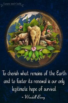 To cherish what remains on earth and to foster its renewal is our only legitimate hope of survival #earth #environment #planet