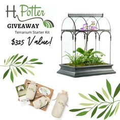 Enter for a chance to win a $325 Terrarium Starter Kit from H Potter!   Win the essentials for your very own indoor terrarium:  🌿 Barrel Vault Wardian Terrarium Case - Curved Glass Enclosure 🌿 Planting Kit - includes pea gravel, activated charcoal, and soil Rock Path, Pea Gravel, Curved Glass, Activated Charcoal, Terrariums, Starter Kit, Trellis, Bird Houses, Planting
