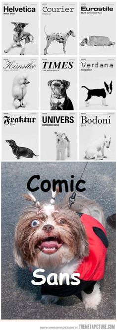 Dogs as fonts…@Olivia Loeffler remember when we were picking fonts for the front cover of the year book??? hahahahahahaha