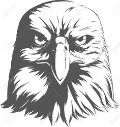 Find Eagle Silhouettes Vector Front View stock images in HD and millions of other royalty-free stock photos, illustrations and vectors in the Shutterstock collection. Silhouette Aigle, Eagle Silhouette, Silhouette Vector, Tattoo Aigle, Free Vector Graphics, Vector Art, Eagle Face, Eagle Head, Eagle Drawing
