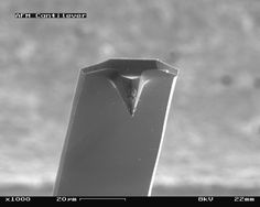AFM (used) cantilever in Scanning Electron Microscope, magnification_1000x