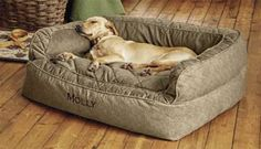 The higher bolster in our ComfortFill Couch Bed increases your dog's sense of security, while a deeper cushioned sleeping area increases her comfort. It's a combination your dog will find blissfully inviting. Improved construction on this bed makes sure the cushion area stays in place, no matter how much your dog moves around. The polyester-filled cushion is springy and plush, ideal for dogs who like to nuzzle and nest, and promises not to flatten or clump. It's all wrapped in our...