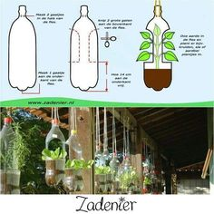 DIY hanging garden Plus