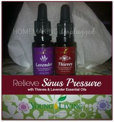 Relieve Sinus Pressure With Young Living Lavender Essential Oil and Thieves Oil Blend