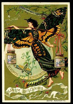 https://flic.kr/p/7n7a3N | Liebig S265 Butterfly Girls 3 | German edition, 1890.