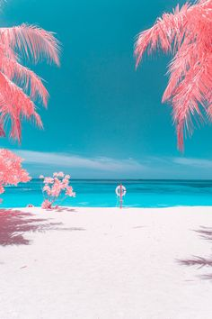 The Maldives Infraland II on Behance Aesthetic Backgrounds, Aesthetic Iphone Wallpaper, Aesthetic Wallpapers, Wallpapers Rosa, Pretty Wallpapers, Cute Summer Wallpapers, Frühling Wallpaper, Wallpaper Backgrounds, Infrared Photography