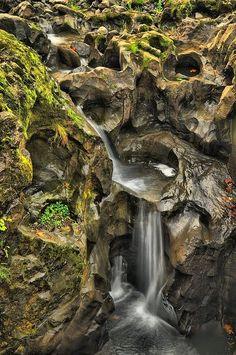 Tumwater Falls, Olympia, Washington