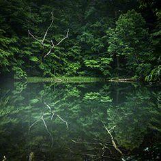 NOVELTY RANGE GALLERY   MOONLIT JAPAN - Tsukinuma Swamp, Towada City, Aomori Prefecture, Japan   青森県十和田市 月沼