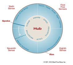Dr. Dan Siegel - Resources - Wheel Of Awareness