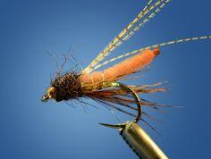 fox poopah caddis pupa fly pattern