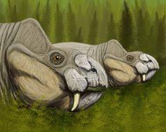 Rabidosaurus cristatus by ~DiBgd