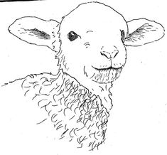 Marvelous Drawing Animals In The Zoo Ideas. Inconceivable Drawing Animals In The Zoo Ideas. Love Drawings, Animal Drawings, Easy Drawings, Pencil Drawings, Lamb Drawing, Sheep Drawing, Realistic Eye Drawing, Human Figure Drawing, Art And Illustration