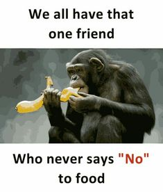Biharii (Only the monkey vali pic goes on you) Funny School Jokes, Some Funny Jokes, Crazy Funny Memes, Funny Relatable Memes, Funny Facts, Best Friend Quotes Funny, Besties Quotes, Cute Funny Quotes, Crazy Girl Quotes