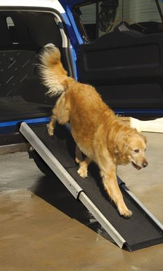 Make life easier on your dog or cat with our Telescoping Pet Ramp. For a little help up uneven stairs or a big step into the truck bed, this innovative pet product accommodates pets of all sizes and ages.