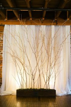 Using Branches in a Wedding