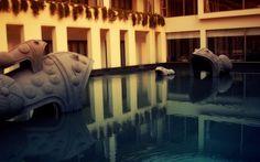 Human Fish Tank