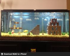 Awesome fish tank is awesome
