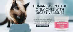 Healthy Pets Digestive Enzymes