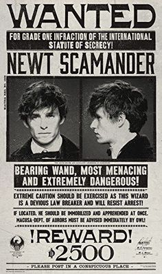 newt scamander wanted poster fantastic beasts - Here you can learn the good, the bad and the ugly of the magical world's most prominent figures. Today we will focus on famous magizoologist Newt Scamander. Fans D'harry Potter, Theme Harry Potter, Harry Potter Fandom, Harry Potter Universal, Harry Potter World, Harry Potter Wanted Poster, Hogwarts, Slytherin, Eddie Redmayne