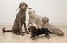 Dogs in Art at the StockBridge Gallery - Seated Mop Dog Sculpture by Dominic Gubb,