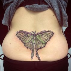 Woodblock style luna moth (Actias luna) tattooed last week by @arielcafarelli…