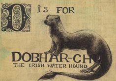 the dobhar-chu