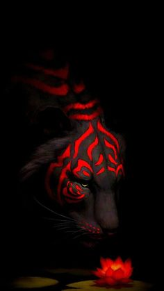 Aesthetic Tiger Tribal with Red Rose Wallpaper Beste Iphone Wallpaper, Tiger Wallpaper, Eyes Wallpaper, Hanuman Wallpaper, Dark Wallpaper, Wallpaper Quotes, Joker 3d Wallpaper, Apple Wallpaper, Oneplus Wallpapers