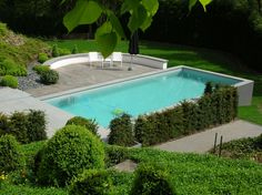 Zwembad tuin 2
