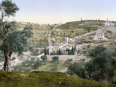 Mount Of Olives, C1900 Photographic Print at Art.com