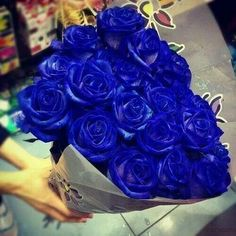 flowers share knowledge and beauty of love of God .Flowers blue rose is infinite ,in poem is passion that renew in love that live ,irradiate a delecate aroma Foto by Fatima Wanderley Exotic Flowers, Pretty Flowers, Blue Flowers, Red Roses, My Flower, Flower Power, Rosa Rose, Coming Up Roses, Love Blue