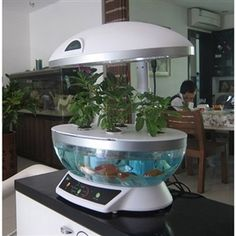 Smart Garden Aquaponics System Hydroponic Agricultural AquacultureIntroducing the most advanced portable and all intelligent soilless plant and fish cultivation system. Aquaponics is a system for the sustainable production of food that combines aquaculture (raising of fish, crawyfish, talapia or shrimp in tanks) with hydroponics (the cultivation of plants in water with no soil)