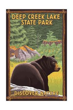 Deep Creek Lake State Park, Maryland - Bear in Forest Art Print by Lantern Press at Art.com