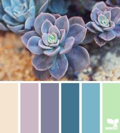 love the taupe, lavendar and dark teal colors in this palette. color ideas for bedroom decor