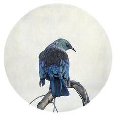 Sentinel by Nathan Secker - prints Nursery Artwork, Nz Art, Kiwiana, Bird Art, Watercolour Painting, Art Boards, New Zealand, Fine Art Prints, Art Gallery