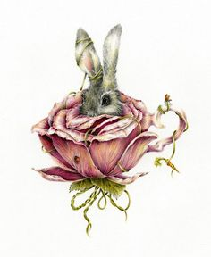 Courtney Brims, Rose Rabbit
