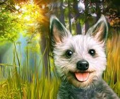 miss arty pets - Google Search