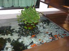 Indoor Pond On Pinterest Fish Ponds Ponds And Koi Ponds