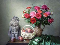 Irina Prihodko Catus, Animal Photography, Still Life, Beautiful Flowers, Painting, Photos, Craft, Luxury, Wine Cellars