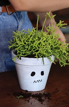 Paint your very own spooky pots and decorate your house in time for the spooky season. Get the kids involved and get festive with this easy DIY that will transform your pot covers into something a little more fun. Decorate your pot faces however you like. #halloween #halloweendecor #spooky #pots #potcovers #planters #ghosts #easydiy #kids #project Ghosts, Houseplants, More Fun, Halloween Decorations, Festive, Easy Diy, Planter Pots, Faces, Projects