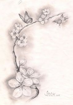 cherry blossom tattoo sketch | ... - DRACONES TATTOO- salon tatuaje bucuresti: SKETCH CHERRY BLOSSOMS Like, Comment, Repin !!?